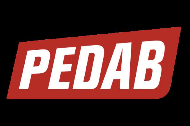 CDS partnere - Pedab